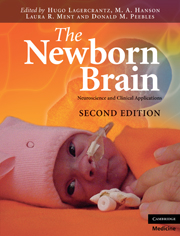 The Newborn Brain