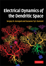 Electrical Dynamics of the Dendritic Space