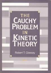 The Cauchy Problem in Kinetic Theory