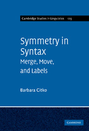 Symmetry in Syntax