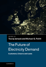 The Future of Electricity Demand