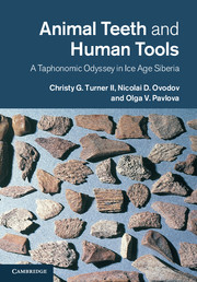 Animal Teeth and Human Tools