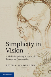 Simplicity in Vision