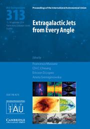 Extragalactic Jets from Every Angle (IAU S313)