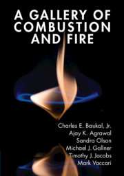 A Gallery of Combustion and Fire