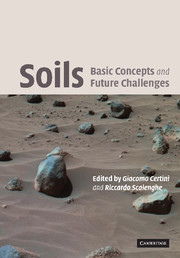 Soils: Basic Concepts and Future Challenges