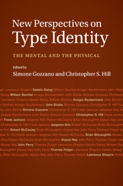 New Perspectives on Type Identity