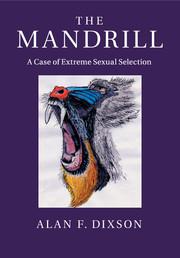 The Mandrill
