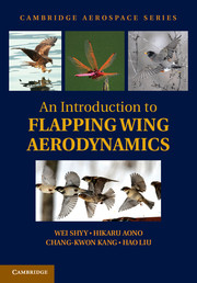 An Introduction to Flapping Wing Aerodynamics