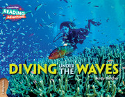 Diving under the Waves 2 Wayfarers