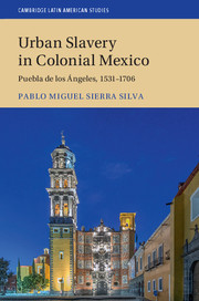 Urban Slavery in Colonial Mexico