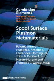 Elements of Emerging Theories and Technologies in Metamaterials