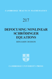 Defocusing Nonlinear Schrödinger Equations