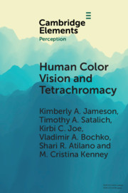 Human Color Vision and Tetrachromacy