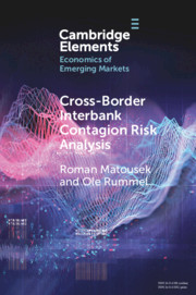 Cross-Border Interbank Contagion Risk Analysis