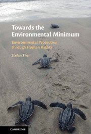 Towards the Environmental Minimum
