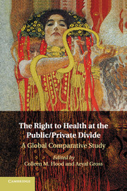 The Right to Health at the Public/Private Divide