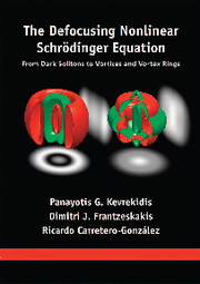 The Defocusing Nonlinear Schrödinger Equation