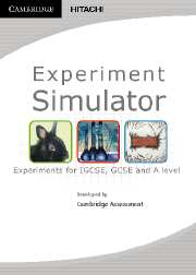 Experiment Simulator
