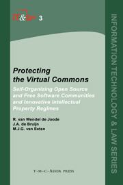 Protecting the Virtual Commons