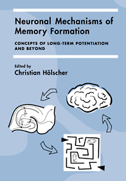 Neuronal Mechanisms of Memory Formation