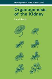 Organogenesis of the Kidney