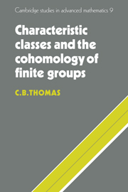 Characteristic Classes and the Cohomology of Finite Groups