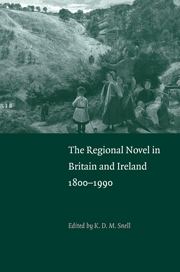 The Regional Novel in Britain and Ireland