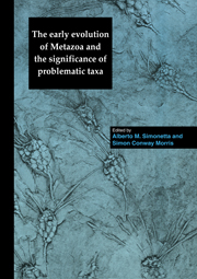 The Early Evolution of Metazoa and the Significance of Problematic Taxa