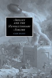 Shelley and the Revolutionary Sublime