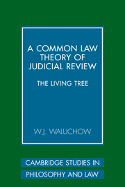 A Common Law Theory of Judicial Review