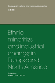 Ethnic Minorities and Industrial Change in Europe and North America