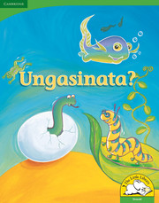 Ungasinata? Big Book version (Siswati)