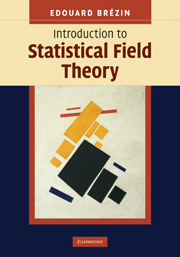 Introduction to Statistical Field Theory