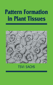 Pattern Formation in Plant Tissues