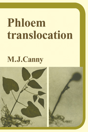 Phloem Translocation