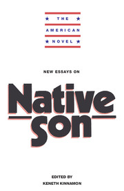 the american novel new essays on native son