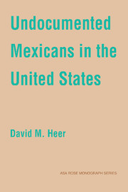 Undocumented Mexicans in the USA