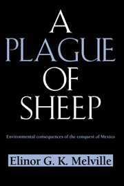 A Plague of Sheep