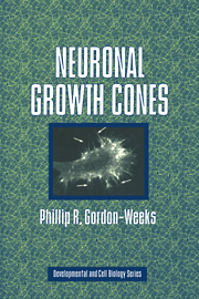 Neuronal Growth Cones