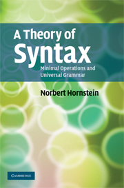 A Theory of Syntax