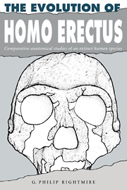 The Evolution of Homo Erectus