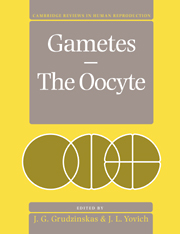 Gametes - The Oocyte