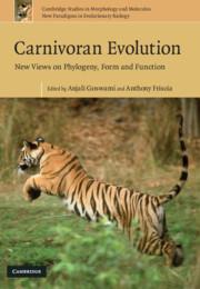 Carnivoran Evolution