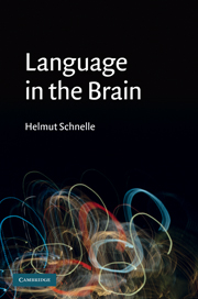 Language in the Brain