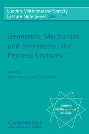 Geometric Mechanics and Symmetry