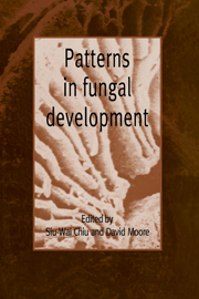 Patterns in Fungal Development