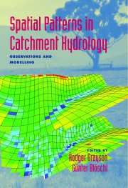 Spatial Patterns in Catchment Hydrology