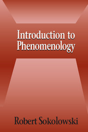 Introduction to Phenomenology