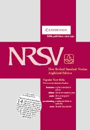 NRSV Popular Text Edition NR532:T tan imitation leather